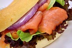 Emparedado de color salmón Imagen de archivo