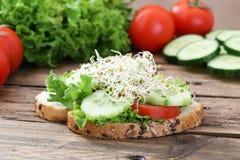Emparedado vegetariano foto de archivo libre de regalías