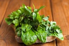 Emparedado vegetariano Bocadillo con los verdes para la comida cruda Foto de archivo