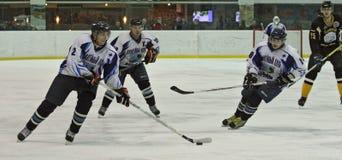 Emparejamiento del hockey sobre hielo Fotos de archivo libres de regalías