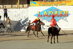 Emparejamiento del polo en Ladakh festifal Imagen de archivo