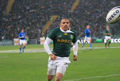 Emparejamiento Italia del rugbi contra Suráfrica - Bryan Habana Foto de archivo libre de regalías