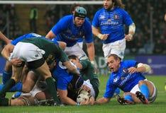 Emparejamiento Italia del rugbi contra Suráfrica - Sergio Parisse Imágenes de archivo libres de regalías