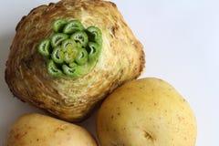 Emparelhamento clássico do aipo vermelho e do alimento das batatas Imagens de Stock