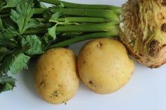 Emparelhamento tradicional do aipo vermelho e do alimento das batatas Foto de Stock