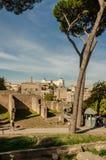 Emperial forum ` s ulica w Rzym obrazy royalty free