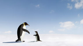 Emperor and Adelie Penguins Stock Image