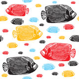 Emperor angelfish colourful seamless  pattern. Realistic engraved colourful style of fishes on white background Stock Photo