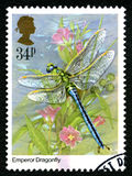 Emperor Dragonfly UK Postage Stamp Royalty Free Stock Images