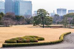 The Emperor Gardens. In Winter, Tokyo Stock Images