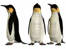 Emperor Penguin. 3D Render of an Emperor Penguin stock illustration
