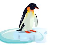 Emperor Penguin, cdr vector Royalty Free Stock Images