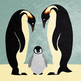 Emperor penguin family. Illustration of a emperor penguin couple with a small offspring Royalty Free Stock Photo