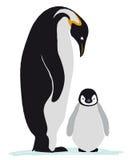 Emperor penguin family Stock Photography