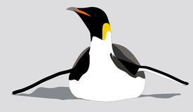 A Emperor penguin sliding on its belly. Emperor Penguin sliding on its belly towards you, part of a set of 3 illustrations Royalty Free Stock Photos