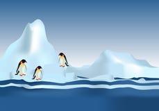 Emperor Penguins, cdr vector. Emperor Penguin on floating ice, vector format vector illustration
