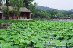 Emperor's garden Stock Photography