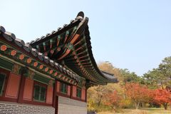 Emperor's Korean Palace, Gyeongbokgung Palace in Autumn, Seoul, South Korea Royalty Free Stock Photo