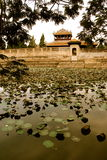 Emperors village ,Hue,Lilly pad pond. Emperors village Hue Vietnam Lilly pad pond Stock Photography