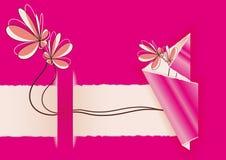 empfindliche Blumen Ostern Stockbilder