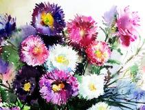 Empfindliche bunte Natur des Aquarellkunst-Hintergrundes blüht frisches romantisches des Asterblumenstraußes Stockbild