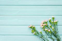 Empfindliche Frühlingsblumen Kleine rosa Gartennelke auf Draufsichtraum des Hintergrundes des blauen Türkises hölzernem für Text stockfotos