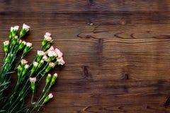 Empfindliche Frühlingsblumen Kleine rosa Gartennelke auf dunklem hölzernem Draufsicht-Kopienraum des Hintergrundes lizenzfreies stockfoto