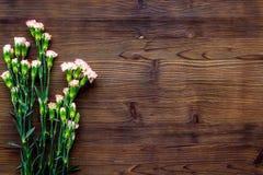 Empfindliche Frühlingsblumen Kleine rosa Gartennelke auf dunklem hölzernem Draufsicht-Kopienraum des Hintergrundes stockbild