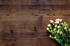 Empfindliche Frühlingsblumen Kleine rosa Gartennelke auf dunklem hölzernem Draufsichtraum des Hintergrundes für Text stockfoto