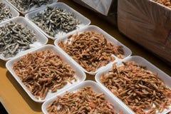 Empfindliche japanische Nahrungsmittel Lizenzfreies Stockfoto