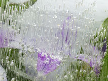 Empfindliche organische grüne und lila Abstraktion Lizenzfreies Stockbild