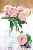 Empfindliche rosafarbene Rosen Lizenzfreie Stockfotografie
