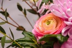 Empfindlicher frischer Blumenstrauß von frischen Blumen mit rosa Ranunculus Lizenzfreies Stockbild