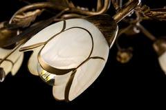 Empfindlicher Leuchter von Blumenlampen auf Schwarzem Lizenzfreie Stockfotografie