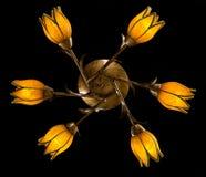 Empfindlicher Leuchter von den Blumenlampen lokalisiert auf Schwarzem Lizenzfreies Stockbild
