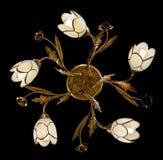 Empfindlicher Leuchter von den Blumenlampen lokalisiert auf Schwarzem Stockfotografie