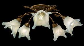 Empfindlicher Leuchter von den Blumenlampen lokalisiert auf Schwarzem Stockfotos
