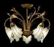 Empfindlicher Leuchter von den Blumenlampen lokalisiert auf Schwarzem Lizenzfreies Stockfoto