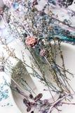 Empfindlicher Pastellblumenhintergrund Lizenzfreies Stockbild