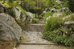 Empiedre el camino de la escalera Imagen de archivo libre de regalías