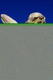 Empiedre la estatua Fotos de archivo libres de regalías