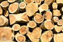 Empilage de bois de bois de charpente Images libres de droits