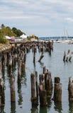 Empilages en bois à côté de côte de Portland Photographie stock libre de droits