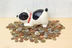 Empilhe a moeda do baht tailandês com o banco canino no fundo da madeira compensada e no co Imagens de Stock