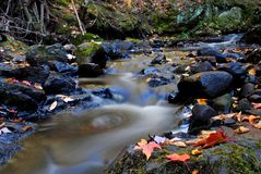 Empire Creek Royalty Free Stock Images