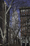 Empire State Building from Madison Square Park - New York City Royalty Free Stock Image