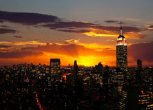 The Empire State Building and Manhattan royalty free stock images