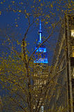 Empire State Building at night. Stock Images