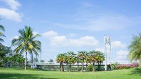 Emplacement dans le parc, le pont et les paumes extérieurs en parc images libres de droits
