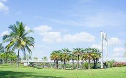 Emplacement dans le parc, le pont et les paumes extérieurs en parc images stock